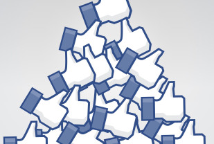 How did you get your Facebook Likes?