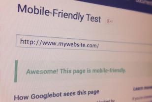 Fernand Fenech - Google Mobile Friendly test