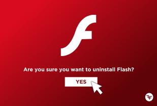 Fernand Fenech - Adobe Flash